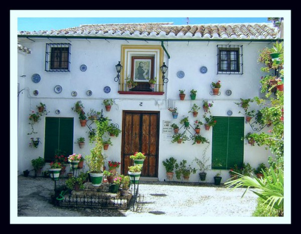 mudanza a guaquil casa con plantas